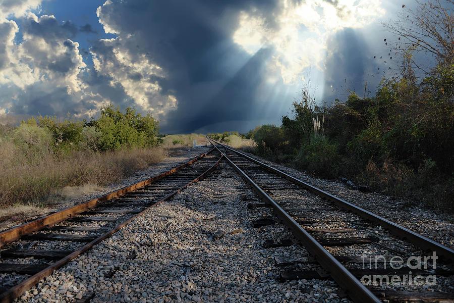 Train Track Junction In Charleston Sc Photograph