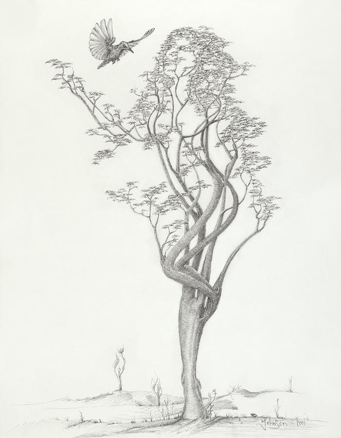 Tree Dancer Drawing - Tree Dancer In Flight by Mark Johnson