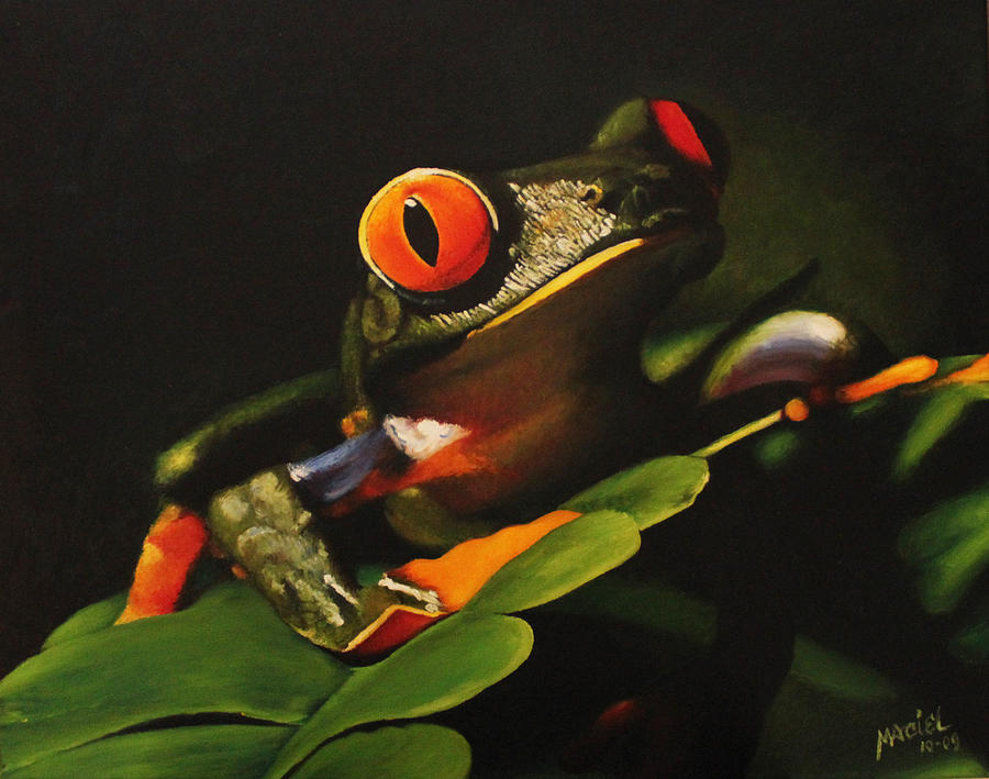 Oil Painting Painting - Tree Frog by Maciel Cantelmo