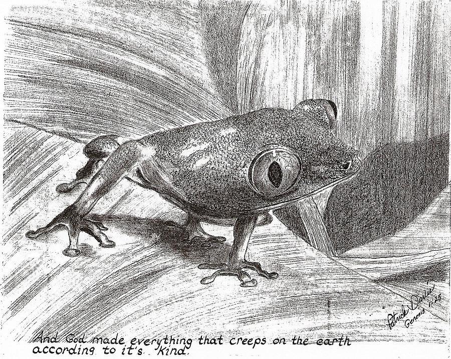 Tree Frog Drawing Drawing - Tree Frog by Patrick Davis