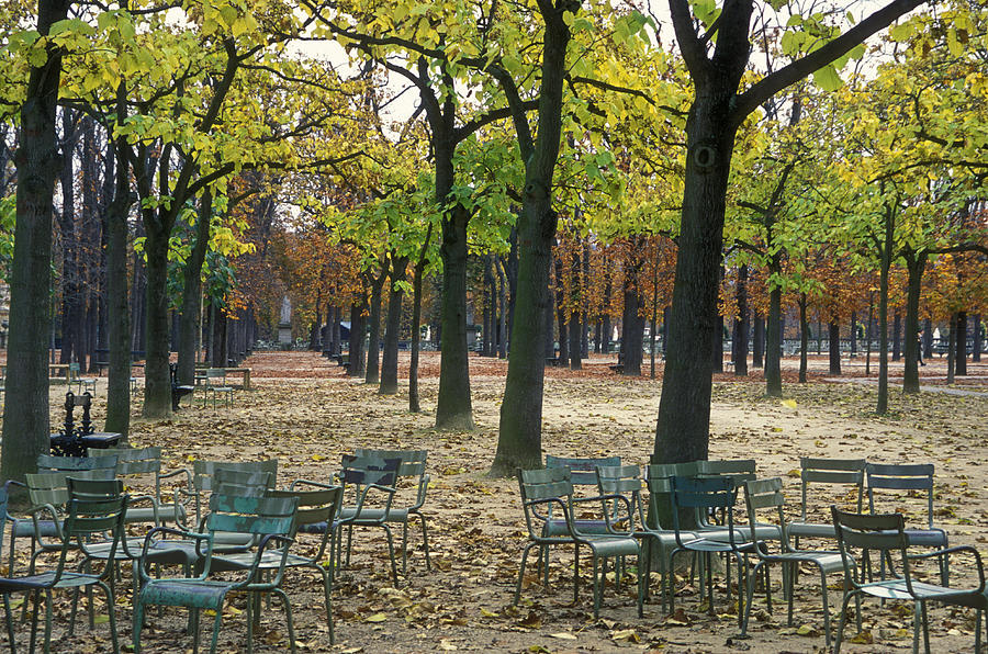 Trees And Empty Chairs In Autumn Photograph