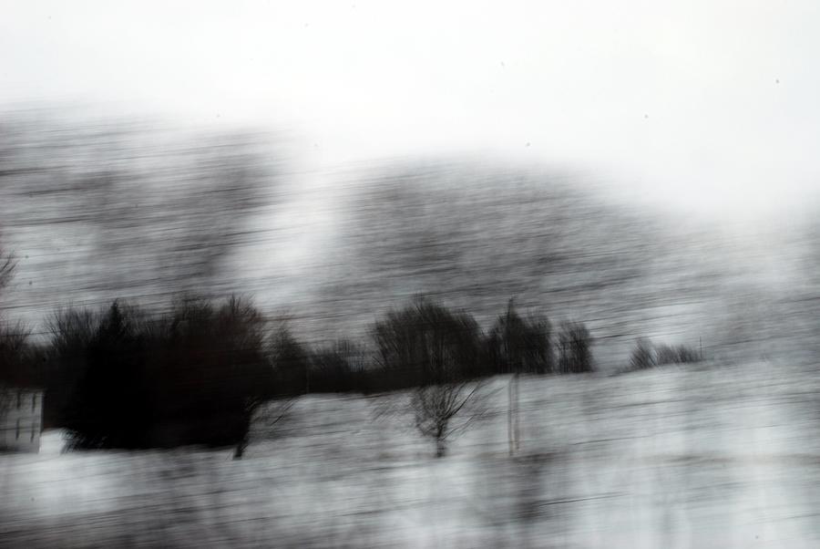 Contempoary Landscape Photography Pyrography - Treescape 2 by David Hickey