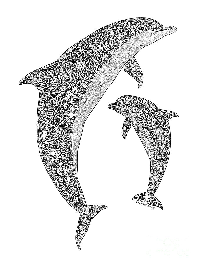 Dolphin Drawing - Tribal Bottle Nose Dolphin And Calf by Carol Lynne