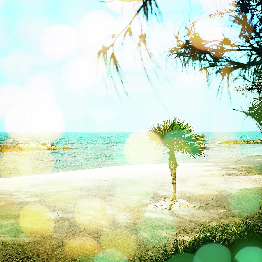 Tropical Beach II Photograph