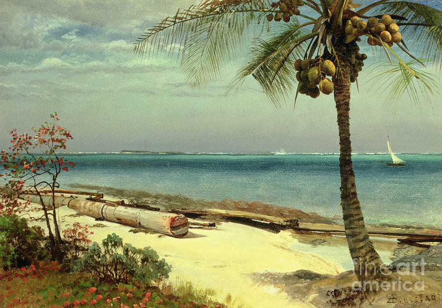 Tropical Coast Painting By Albert Bierstadt