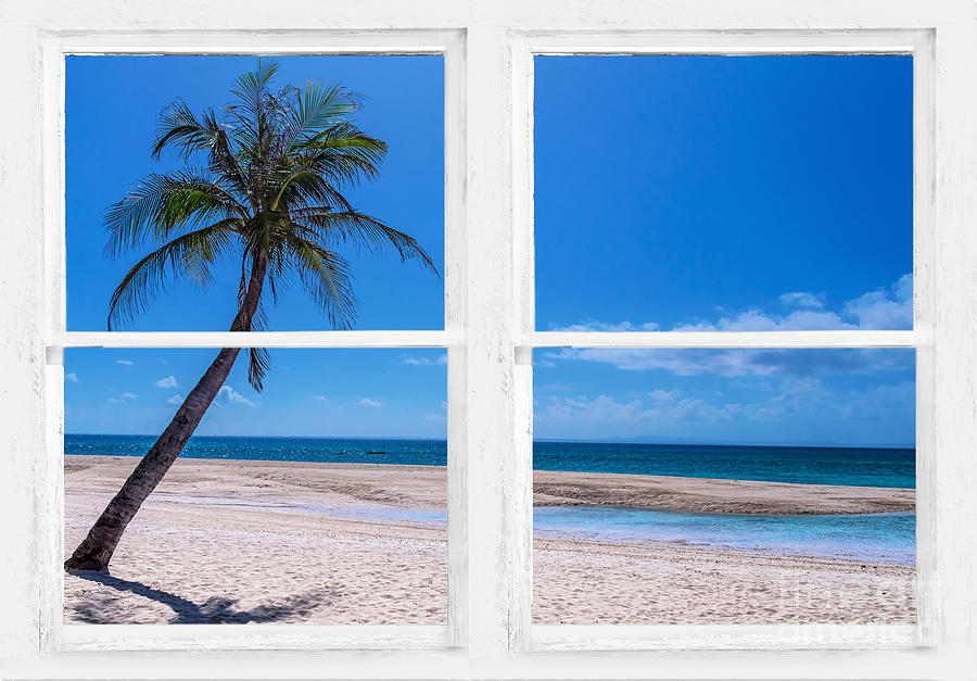 Tropical Paradise Whitewash Picture Window View Photograph