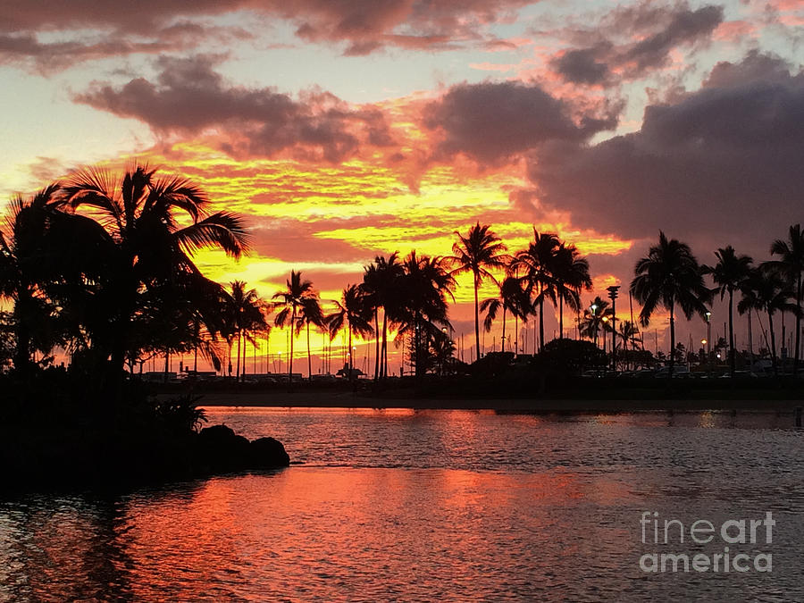 Tropical Sunset Photograph