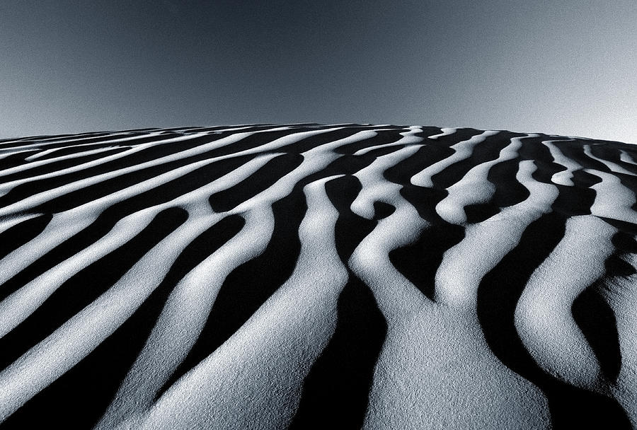 Sand Dunes Photograph - Tunisian Dunes by Tim Booth