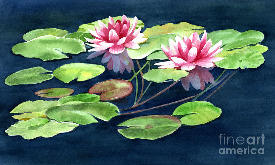 Two Water Lilies With Pads Painting By Sharon Freeman