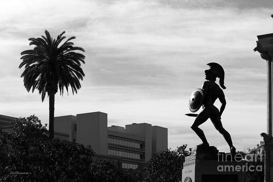 Aau Photograph - University Of Southern California Tommy Trojan by University Icons