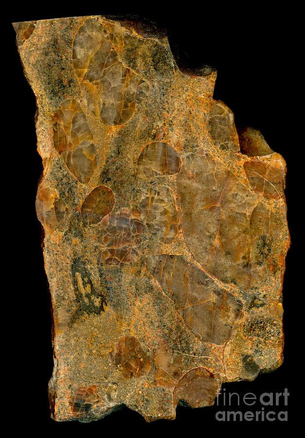 Uranium Ore Conglomerate Photograph