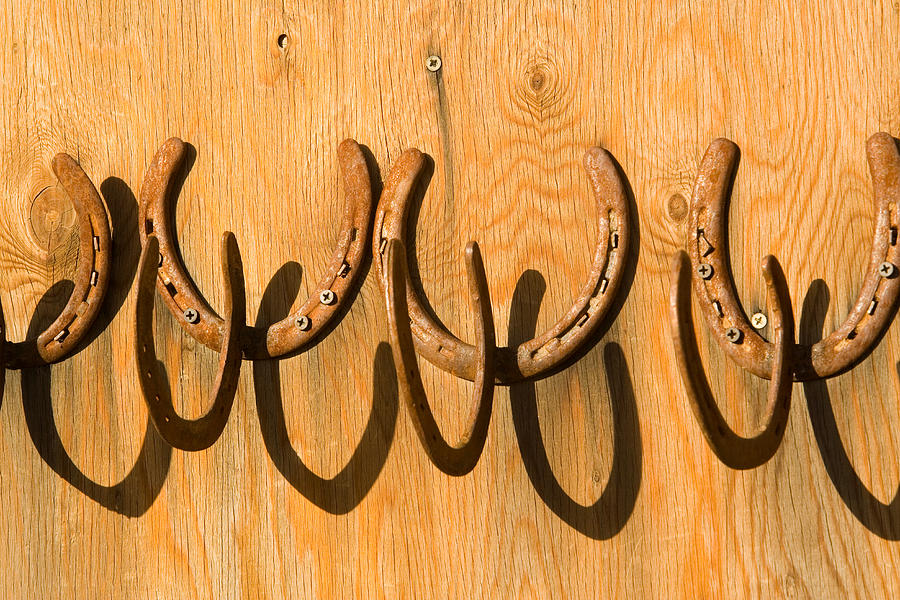 Used horseshoes nailed to a barn door photograph by for Where to buy used horseshoes
