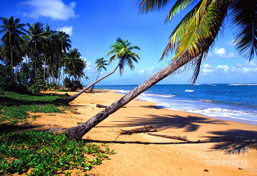 Puerto Rico Photograph - Vacia Talega Shoreline by Thomas R Fletcher