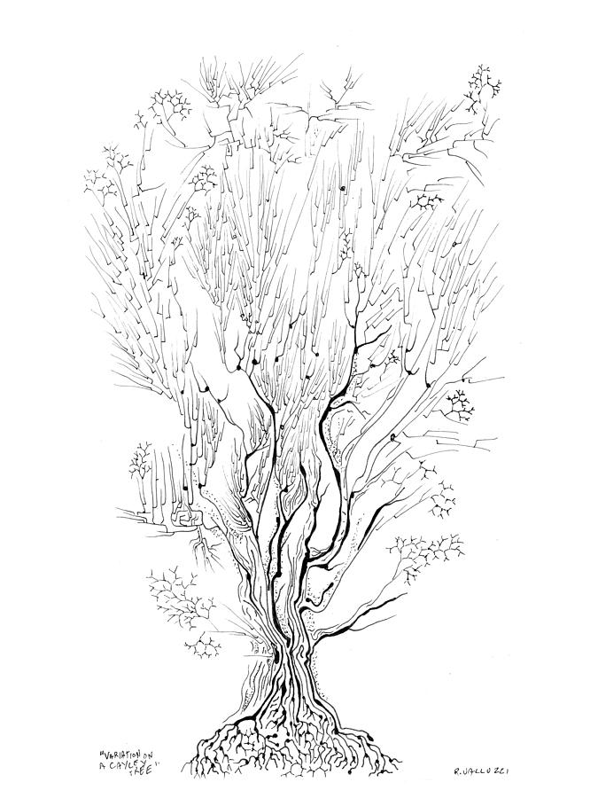 Cayley Tree Drawing - Variation On A Cayley Tree by Regina Valluzzi