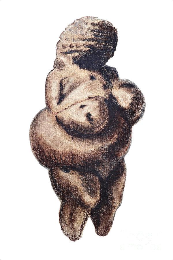 Art Drawing - Venus - Fertility Symbol by Michal Boubin