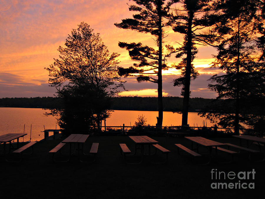 Photography Photograph - View Of Lake Naomi by Addie Hocynec
