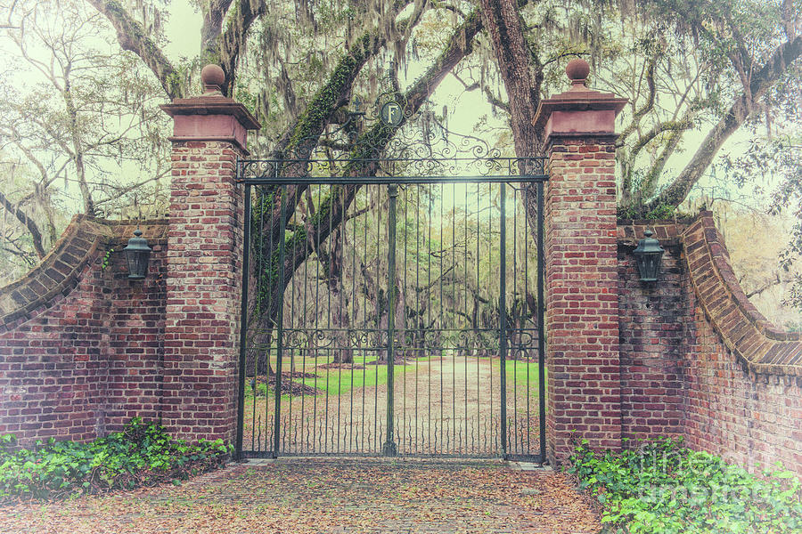 Vintage Fenwick Hall Gate Photograph