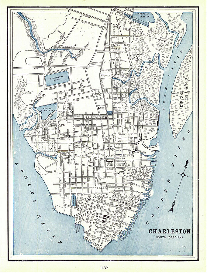 Vintage Map Of Charleston South Carolina  1898 Drawing By