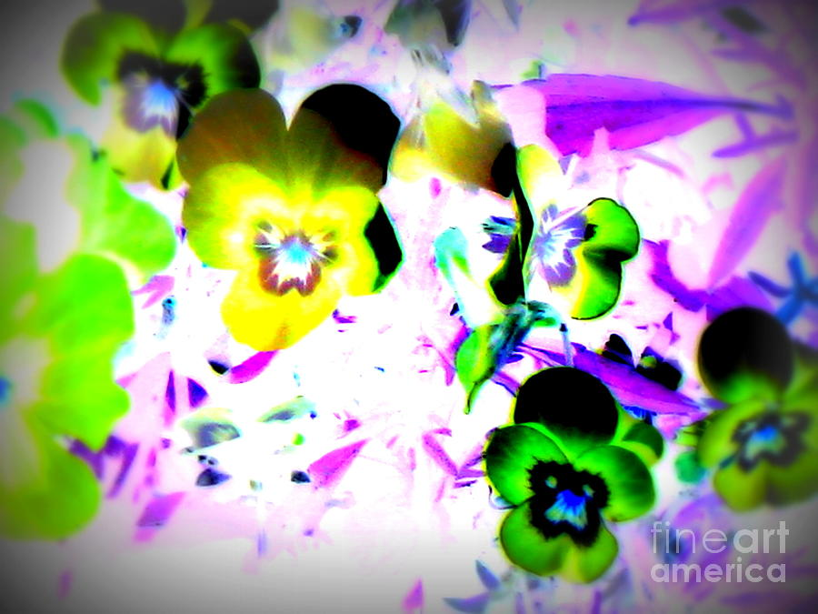 Abstract Canvas Prints Photograph - Violets by Pauli Hyvonen