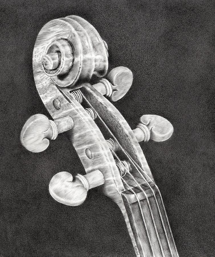 Violin Scroll Drawing