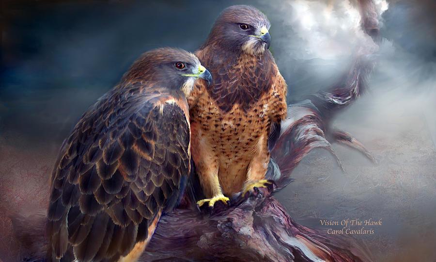 Vision Of The Hawk Mixed Media