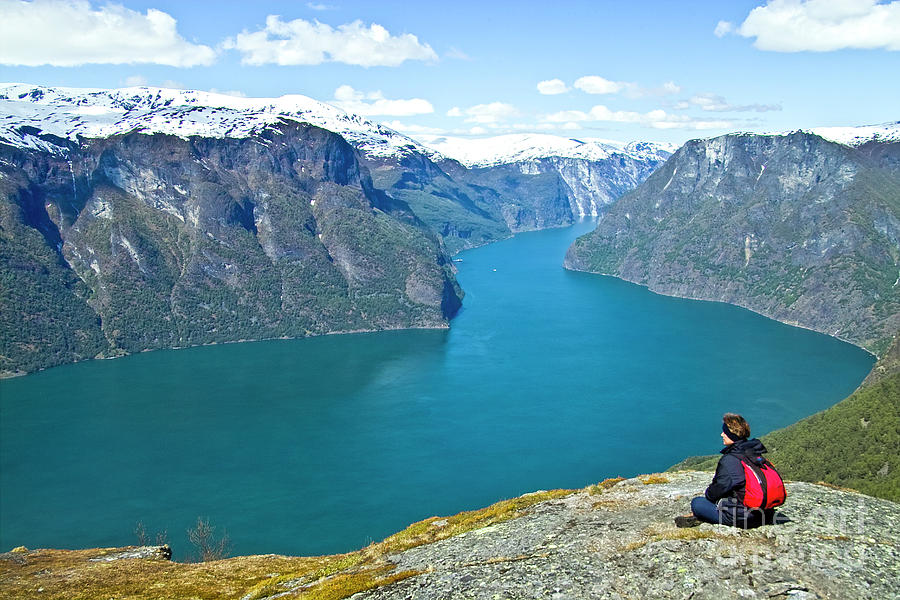 Visitor At Aurlandsfjord Photograph