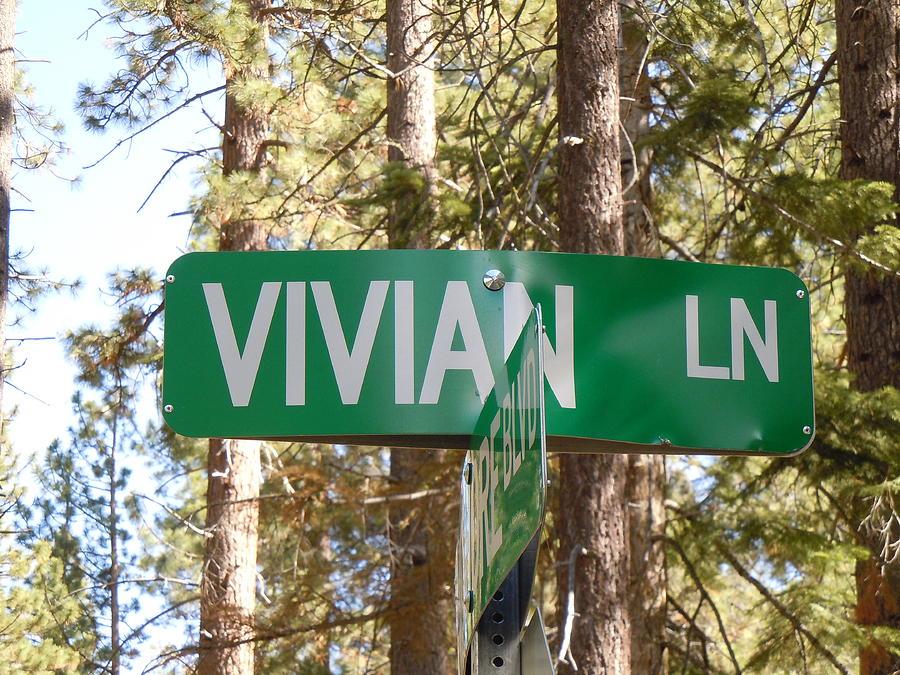 Street Sing Photograph - Vivian Lane by Dan Whittemore