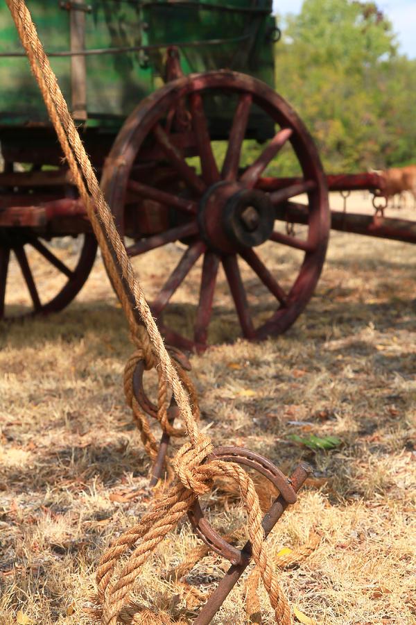 Wagon Photograph - Wagon Stake by Toni Hopper