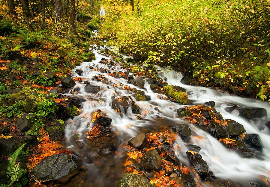 Wahkeena Falls Photograph - Wahkeena Autumn by Mike  Dawson