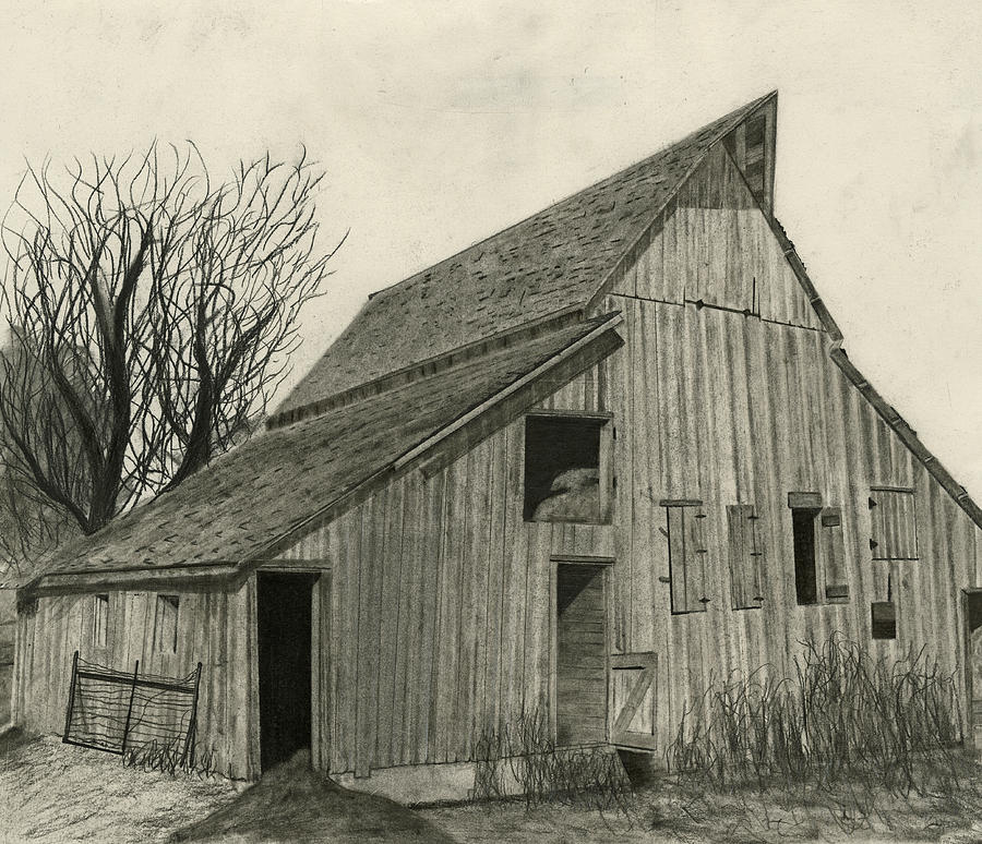 Rural Framed Prints Drawing - Waiting For Life by Bryan Baumeister