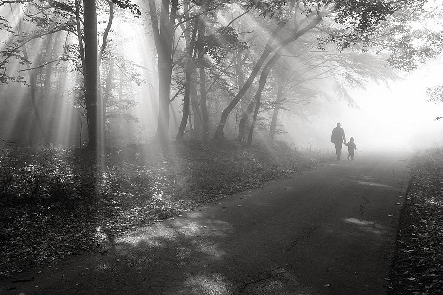 Sunbeam Photograph - Walk In The Light by Floriana Barbu