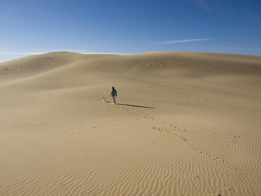 Walking On The Sand Photograph