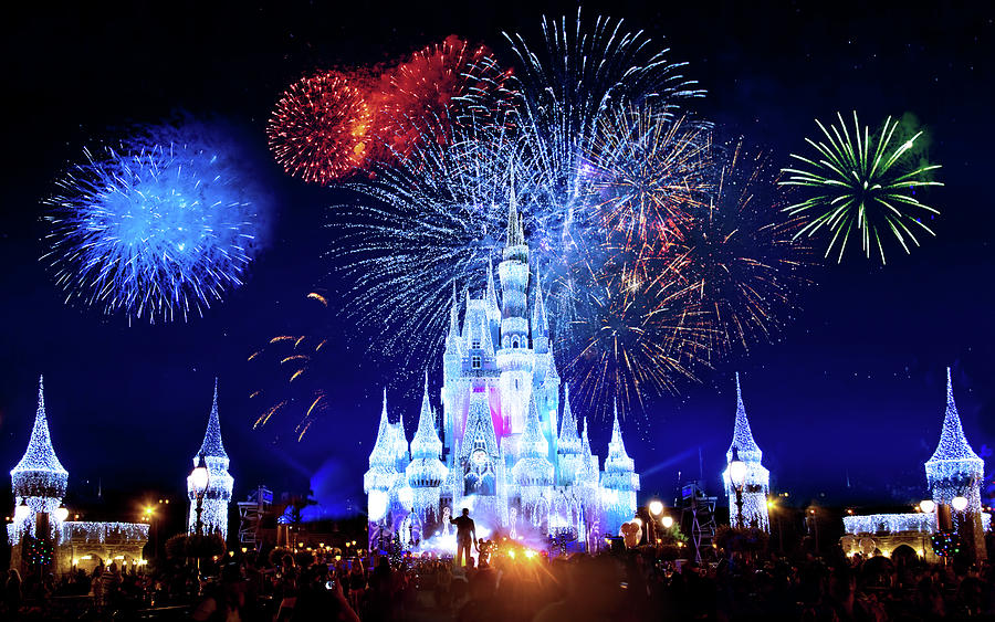 Walt Disney World Fireworks Photograph