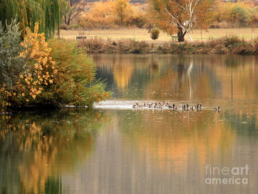 Prosser Photograph - Warm Autumn River by Carol Groenen