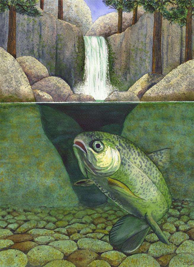Trout Painting - Water by Catherine G McElroy