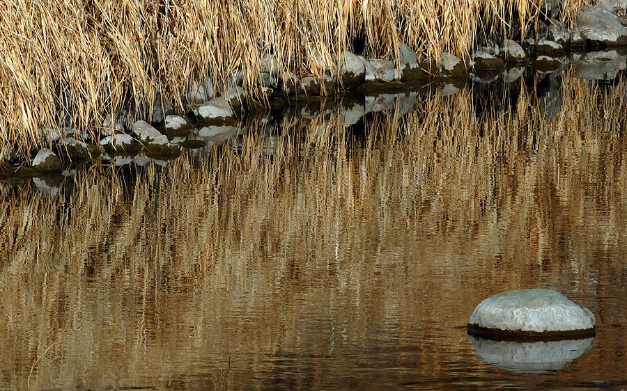 Reflections Photograph - Water Colored  by Steven Milner