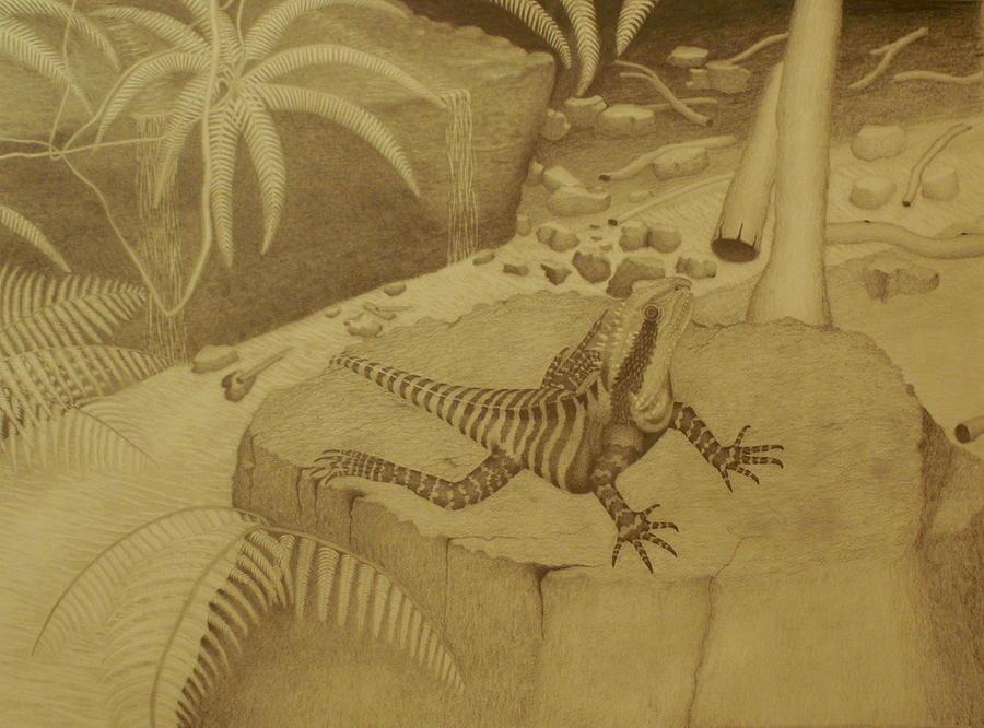 Dragon Drawing - Water Dragon Lizard by Brian Leverton
