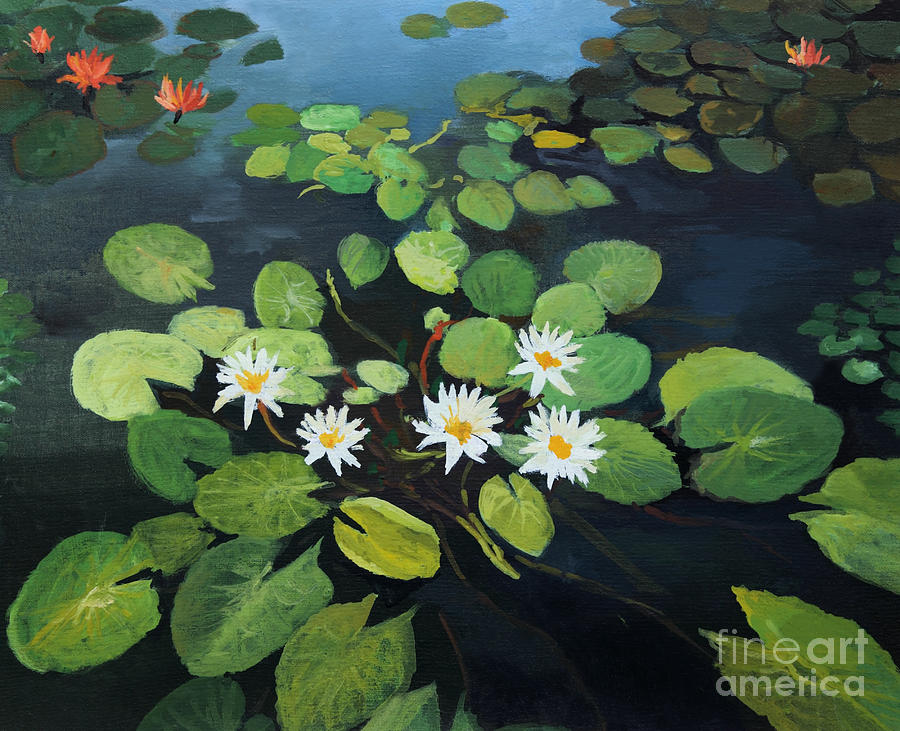 Flower Painting - Water Lilies by Kiril Stanchev