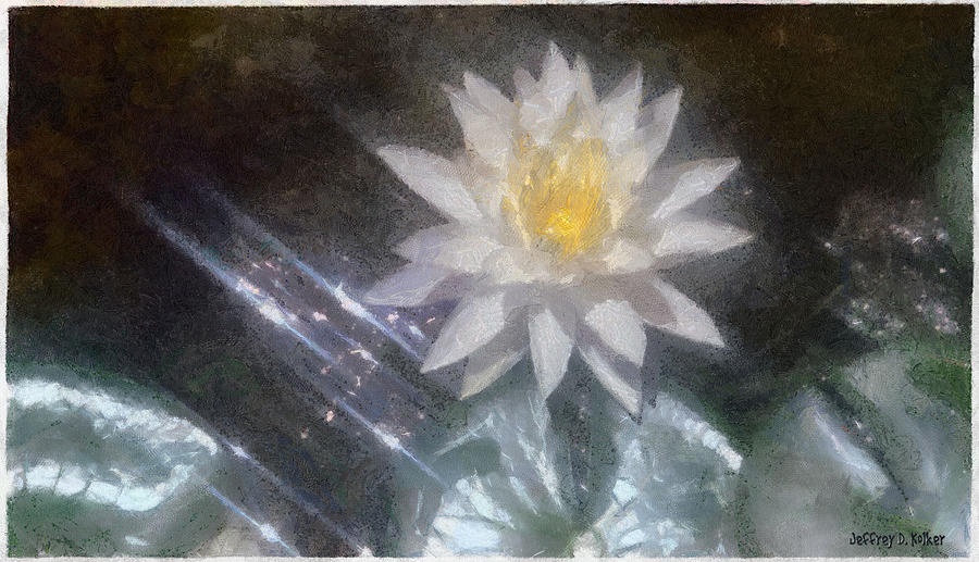 Water Lily Painting - Water Lily In Sunlight by Jeff Kolker
