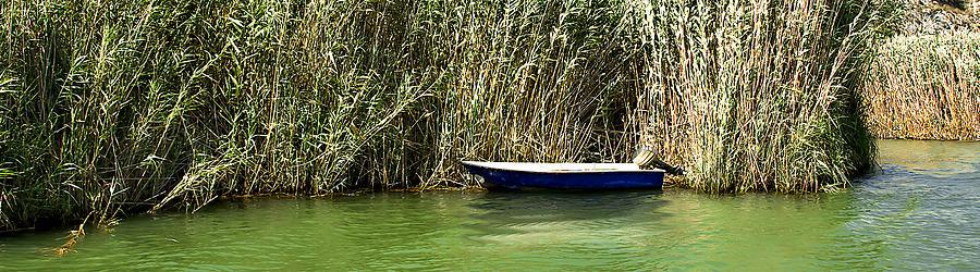 Water Photograph - Water Scene Pano by Svetlana Sewell