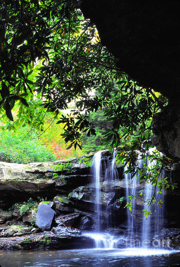 Mccoy Falls Photograph - Waterfall And Rhododendron by Thomas R Fletcher