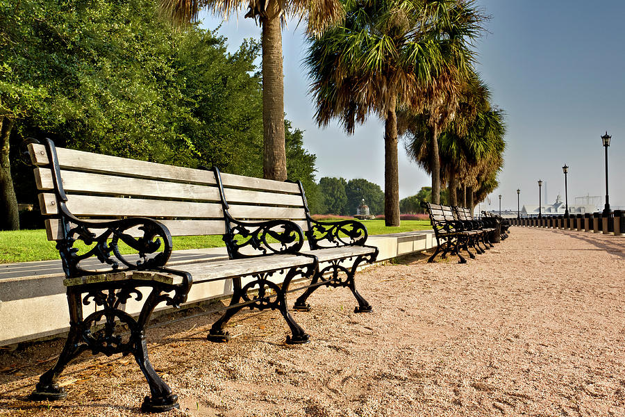 Charleston Photograph - Waterfront Park Bench  by Drew Castelhano