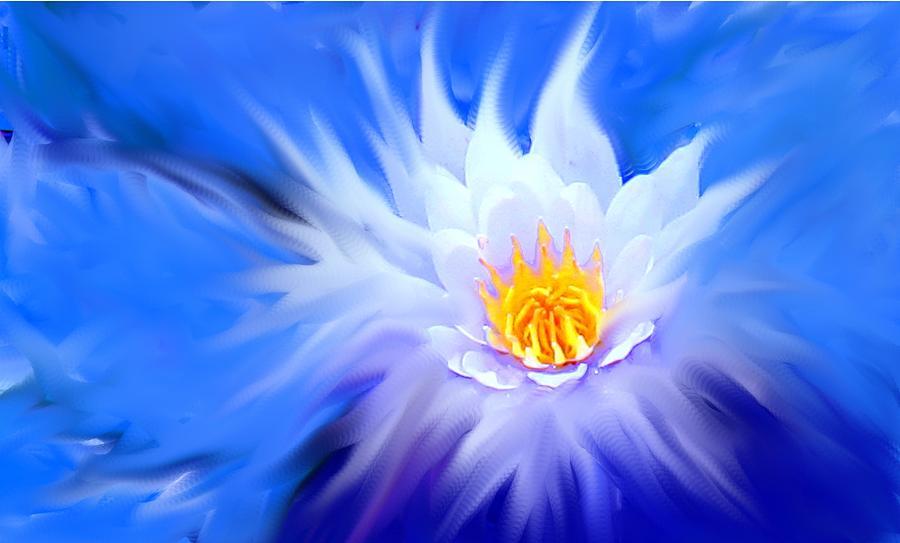 Blue Digital Art - Waterlillies Transformed by Ian  MacDonald