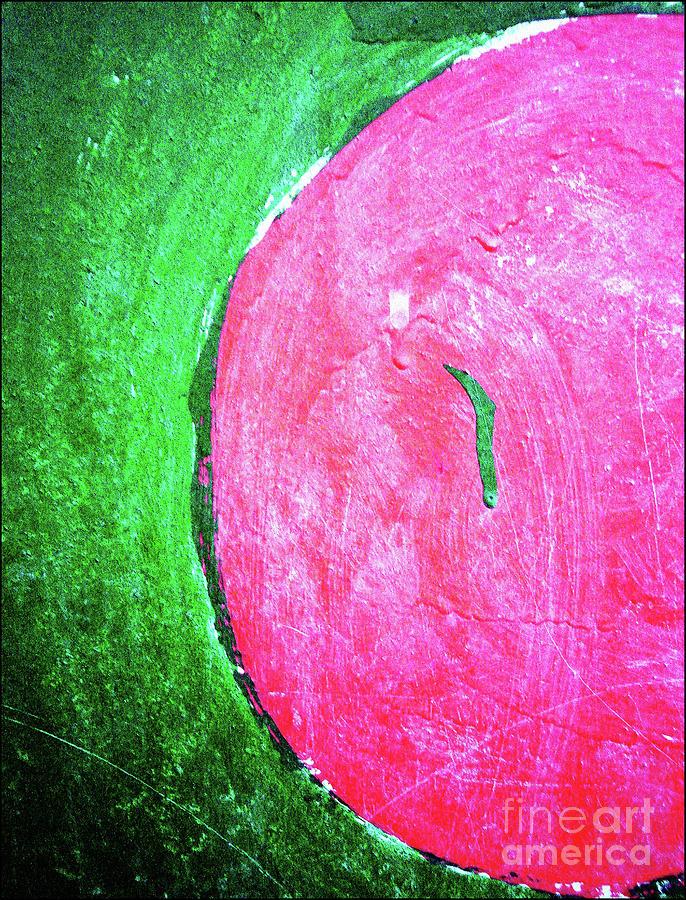 Watermelon Photograph - Watermelon by Inessa Burlak