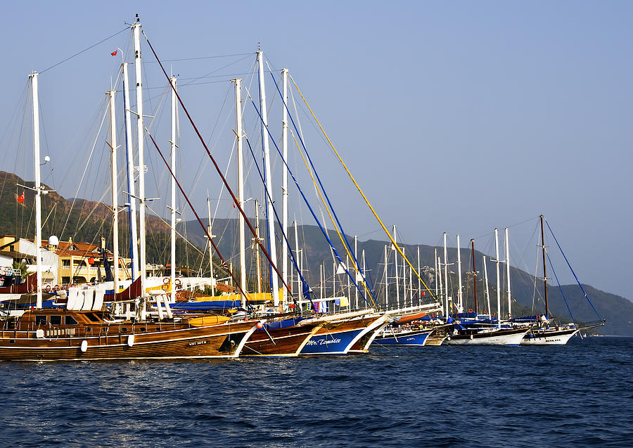 We Are Sailing Photograph