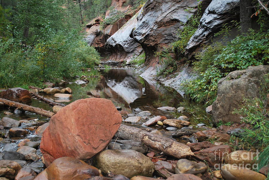 West Fork Trail River And Rock Vertical Sedona Arizona Oak Creek Canyon Wall Water Tree Bush Brush Leaf Pine Reflect Reflection Photograph - West Fork Trail River And Rock Horizontal by Heather Kirk