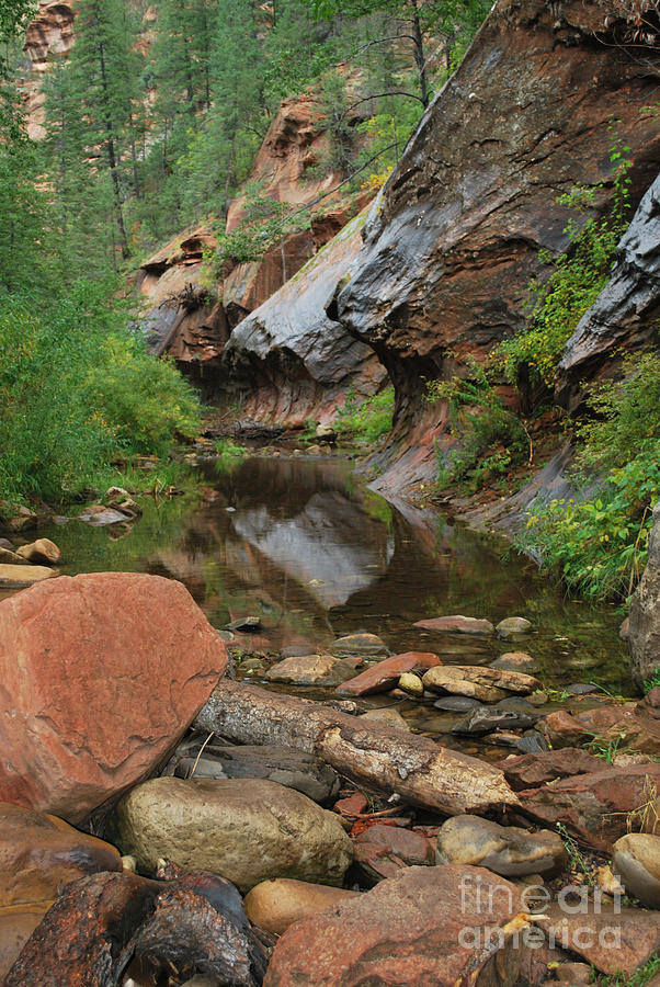 West Fork Trail River And Rock Vertical Photograph
