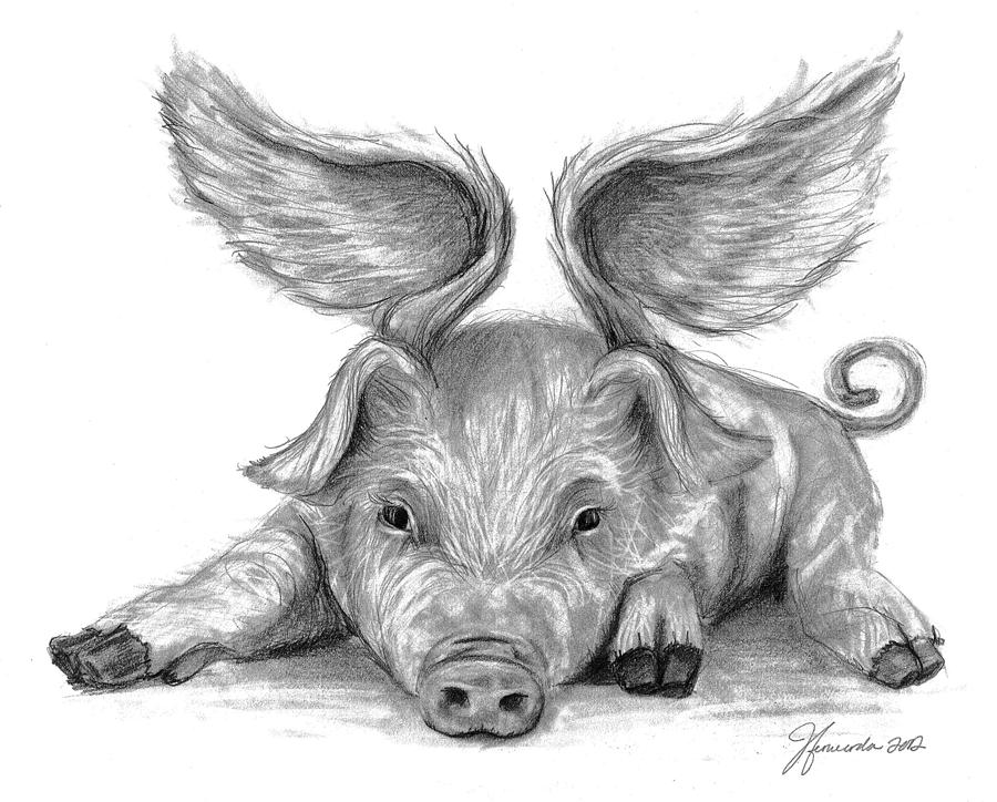 Pig Drawings - When Pigs Fly Pig With Wings Drawing
