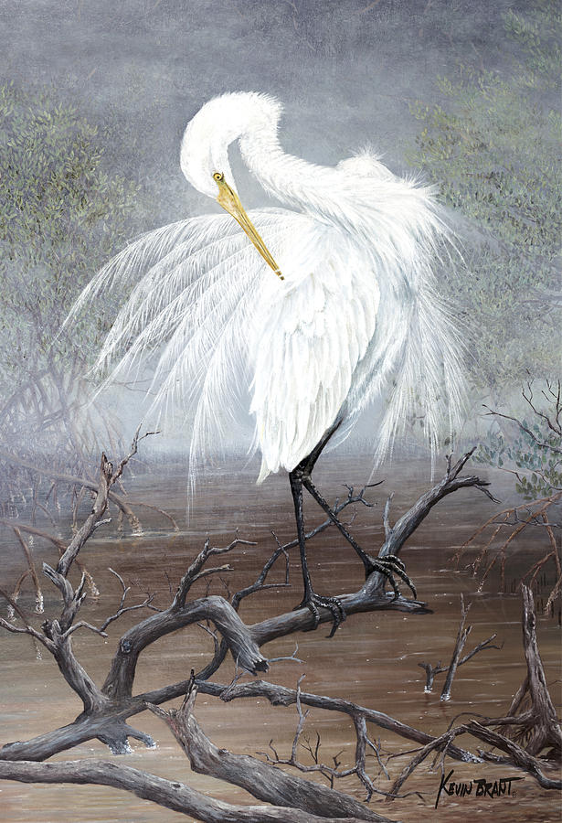 Egret Painting - White Egret by Kevin Brant
