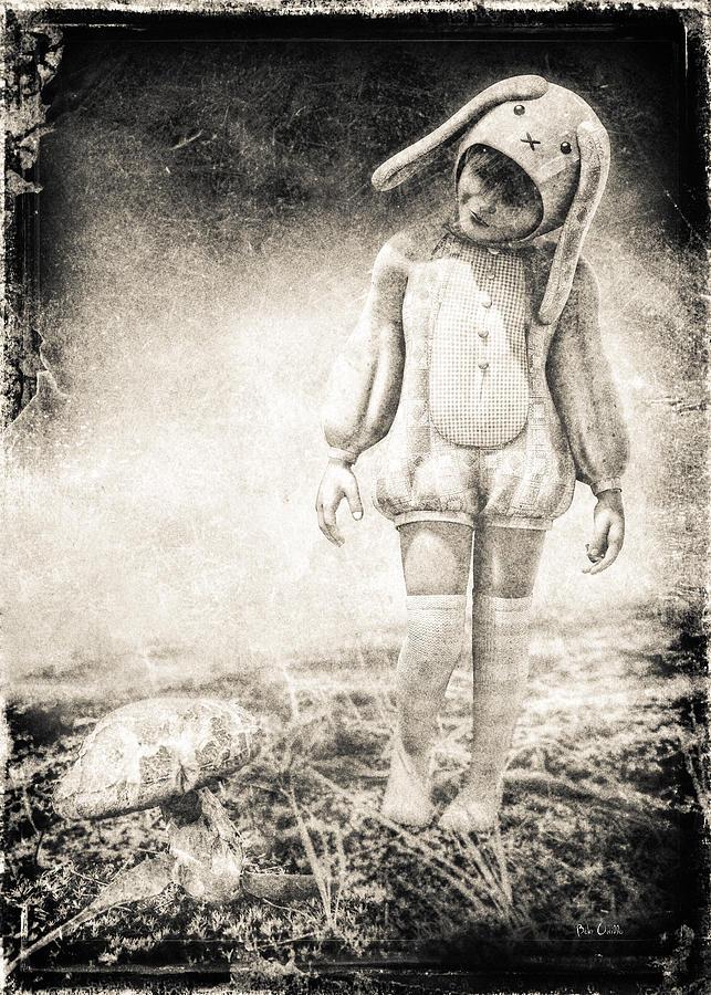 White Rabbit Photograph